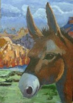 """""""Canyon Donkey"""" by Laura Leveque"""