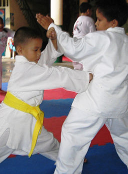 Karate kids train at the Jack and Jill School. (By Jjskarate, cropped and color enhanced by Zanaq (File:JJS_Karate_Kids_on_Training.jpg) [CC BY 3.0 (http://creativecommons.org/licenses/by/3.0)], via Wikimedia Commons